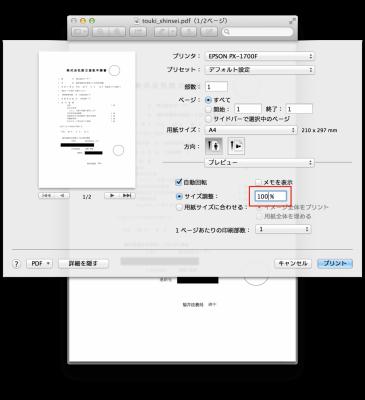 print100per
